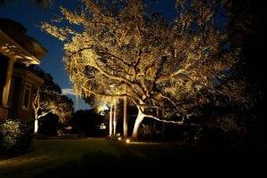 Greenville Outdoor Lighting Business