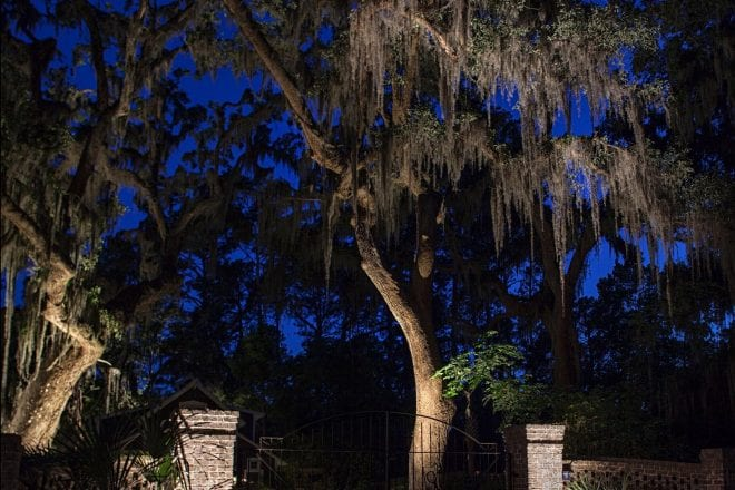 Why a NiteLites Landscape Lighting System Isn't for Everyone