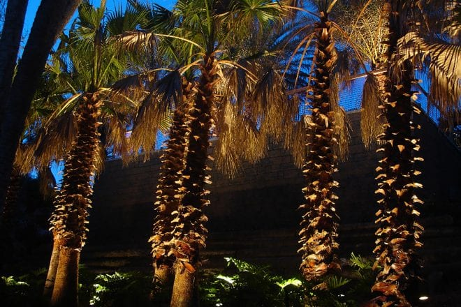 Sarasota Outdoor Lighting Business Offers the Perfect Exterior Lighting Solutions