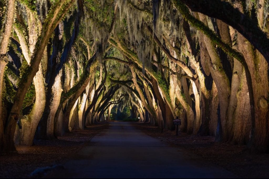 Charleston Commercial Outdoor Lights